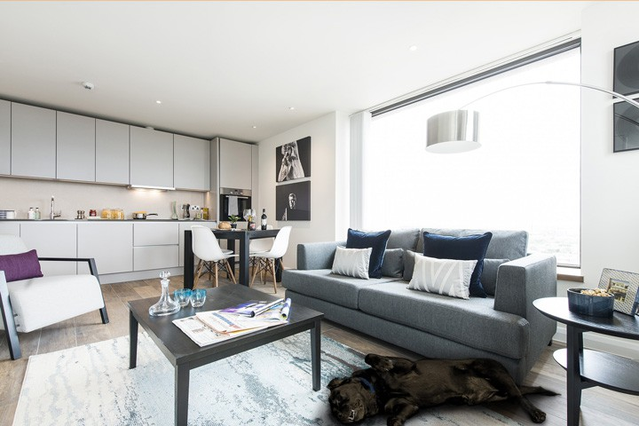 Pet Friendly Apartments For Rent In London Uk