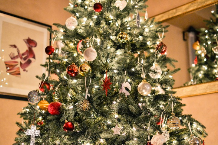 if you arent sure which style of tree will suit your home and family best wyevale garden centres has a guide to picking the perfect christmas tree that